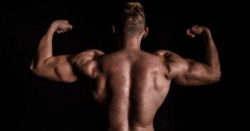 prendre protéines pour un bon développement musculaire
